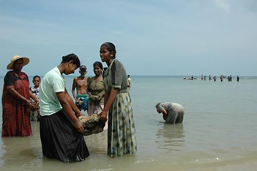 津波で運ばれてきた小岩をリレーで除去する。渚ではリレーの列が3つも4つも見られた。1年近く経った今も、漁は以前のペースには戻らない(スリランカ最北端のポイント・ペドロで。撮影:筆者)