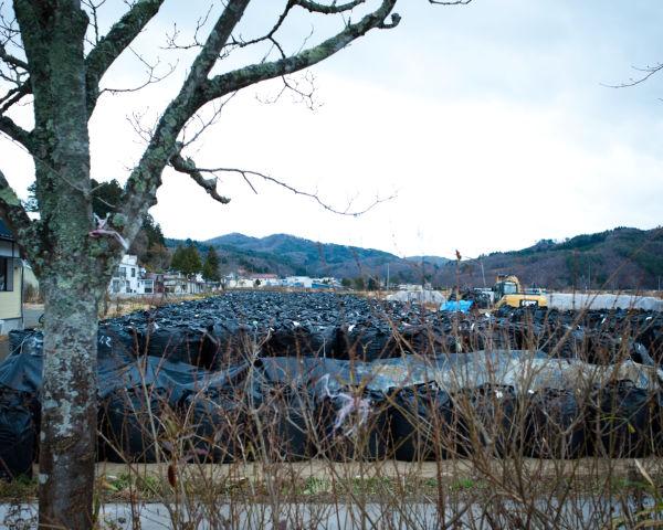 不気味な黒いパックの中には、放射能で汚染された落ち葉や土などが詰まっている。=写真:島崎ろでぃ撮影=