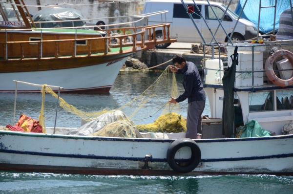 出漁する船。エンジン音がのどかに響いた。=シノップ港 写真:筆者=